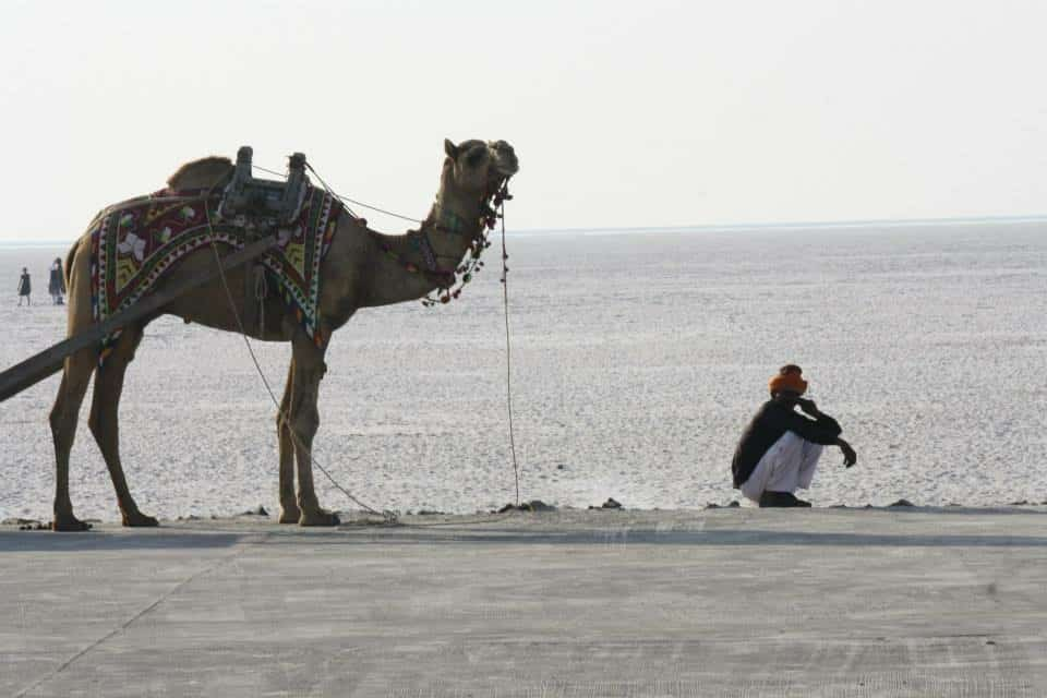 Girls Who Travel | A man sits with a camel by the water.