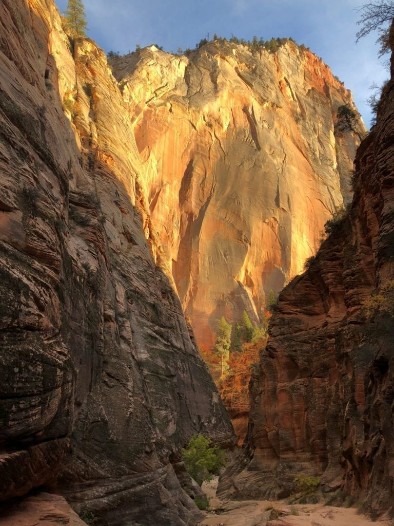 Hiking down from Observation Point in Zion | Girls Who Travel