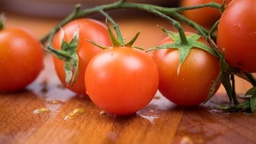 Girls Who Travel | Tomatoes